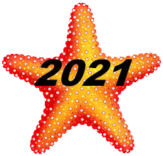 2021 renewal star