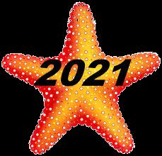 Renewal Star 2021